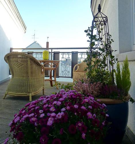 Little terrasse
